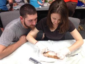 Learning to suture on a pig foot and desperatly hoping I never have to do this on a person!!